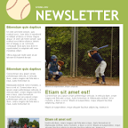 Baseball Team Newsletter Template Download
